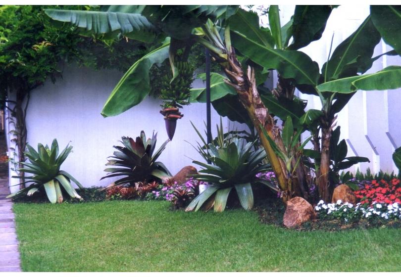 Paisagismo » Jardim residencial em Novo Hamburgo  RS 2